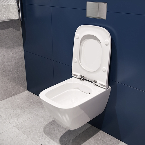 2020 Bathroom - Modo Pure